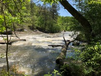Big rapids!