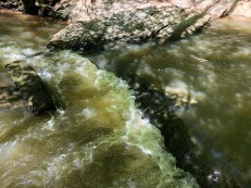 Detail of water.