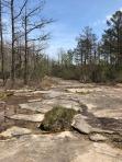 MVT rock trail