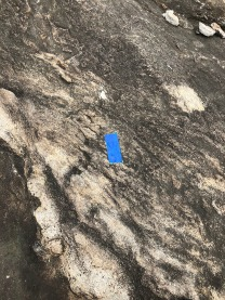 MVT trail marker