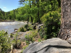 Rocky terrain along the bank.