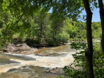 View downstream from the end of the Red Trail.