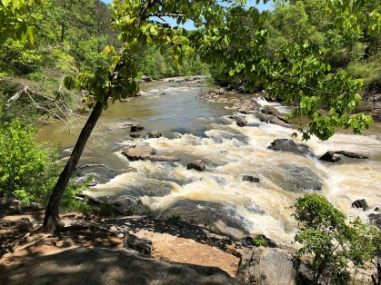 View upstream from the end of the Red Trail.