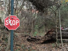 Stop sign before the footbridge on the Doll's Head Trail.