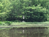 Birdhouse along the wetlands.