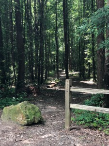 Entrance to new trail.
