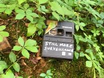 Surveillance, two.