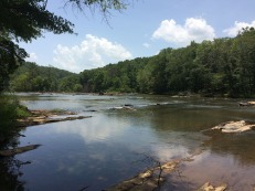 View downstream from trail.